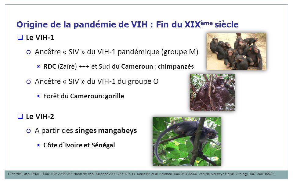 Origine de la pandémie de VIH : Fin du XIX ème siècle  Le VIH-1  Ancêtre « SIV » du VIH-1 pandémique (groupe M)  RDC (Zaïre) +++ et Sud du Cameroun : chimpanzés  Ancêtre « SIV » du VIH-1 du groupe O  Forêt du Cameroun: gorille  Le VIH-2  A partir des singes mangabeys  Côte d ' Ivoire et Sénégal Gifford RJ et al.