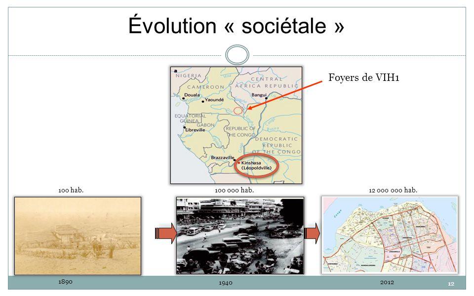 12 Évolution « sociétale » Foyers de VIH1 100 hab. 1890 100 000 hab. 1940 12 000 000 hab. 2012