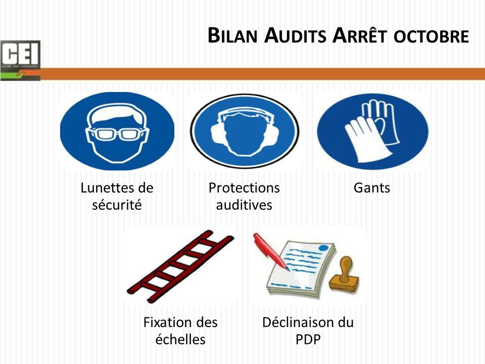 B ILAN A UDITS A RRÊT OCTOBRE Lunettes de sécurité Protections auditives Gants Fixation des échelles Déclinaison du PDP