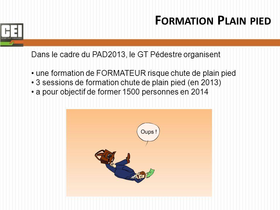 F ORMATION P LAIN PIED Dans le cadre du PAD2013, le GT Pédestre organisent une formation de FORMATEUR risque chute de plain pied 3 sessions de formati