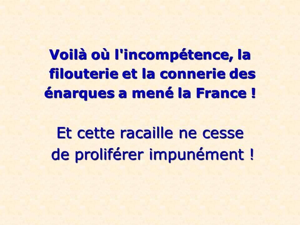 Voilà où l'incompétence, la filouterie et la connerie des filouterie et la connerie des énarques a mené la France ! Et cette racaille ne cesse de prol