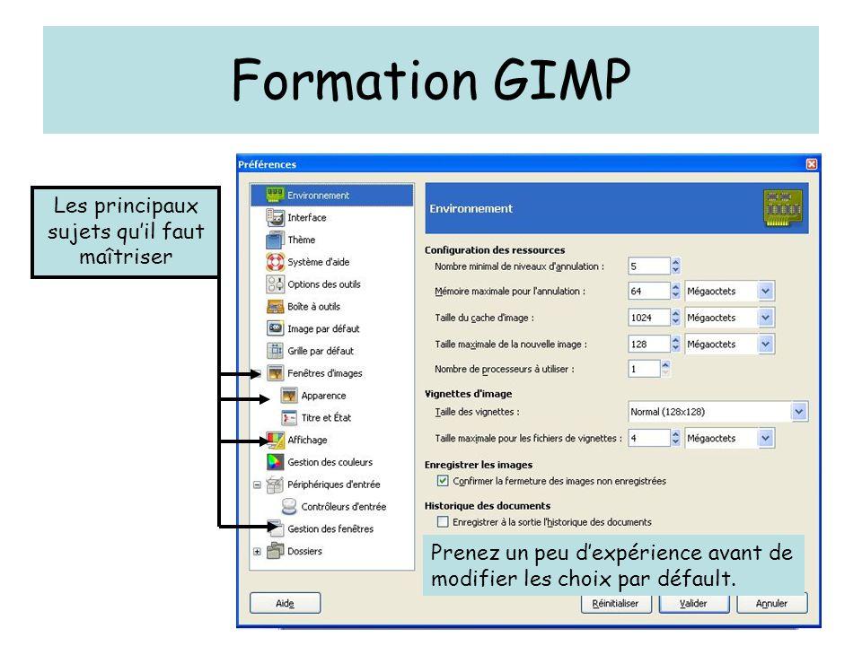 Formation GIMP Les principaux sujets qu'il faut maîtriser Prenez un peu d'expérience avant de modifier les choix par défault.