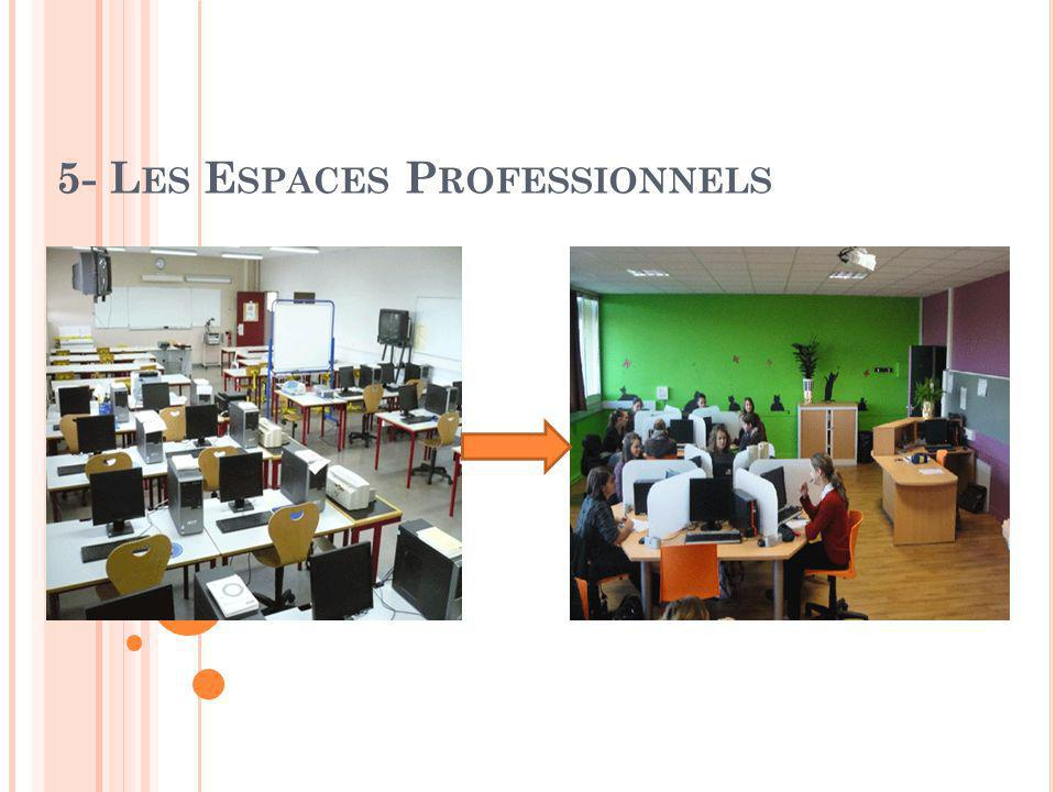 5- L ES E SPACES P ROFESSIONNELS