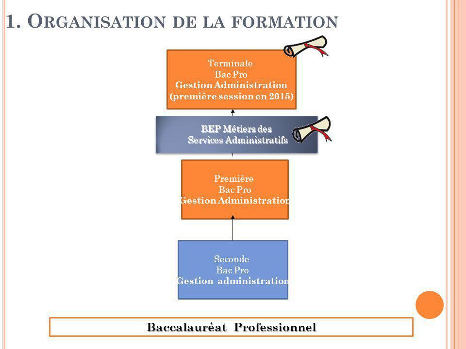Baccalauréat Professionnel 1. O RGANISATION DE LA FORMATION Seconde Bac Pro Gestion administration Première Bac Pro Gestion Administration Terminale B