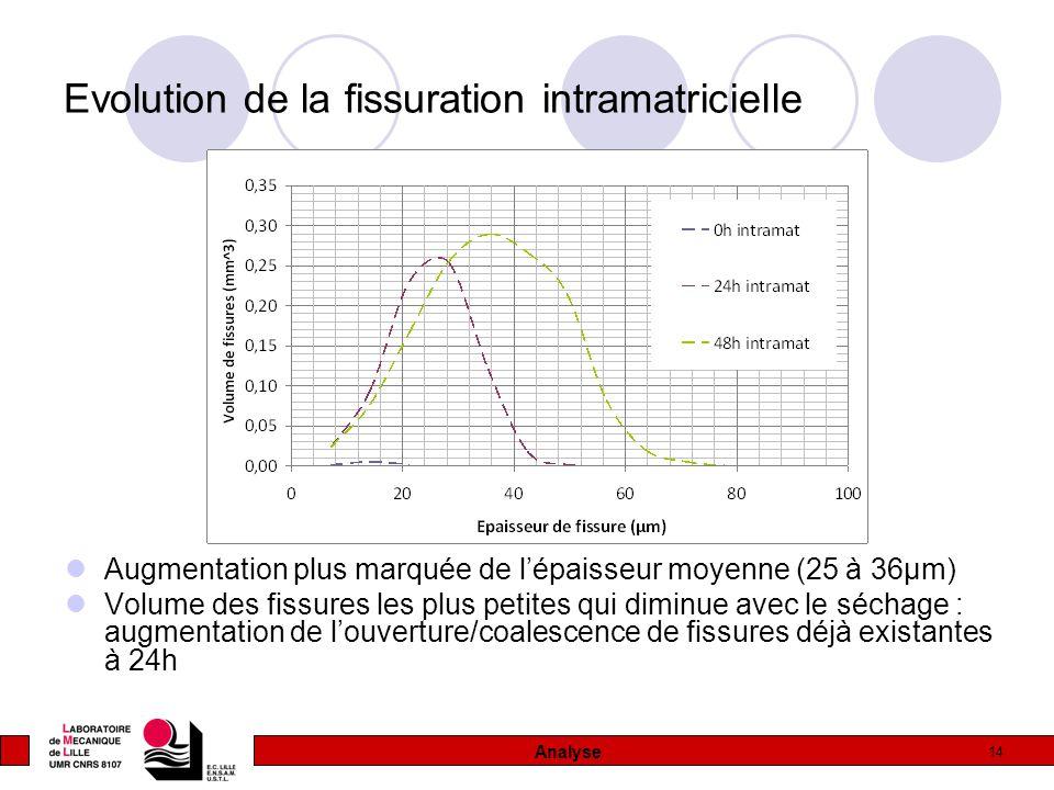 14 Evolution de la fissuration intramatricielle Augmentation plus marquée de l'épaisseur moyenne (25 à 36µm) Volume des fissures les plus petites qui diminue avec le séchage : augmentation de l'ouverture/coalescence de fissures déjà existantes à 24h Analyse
