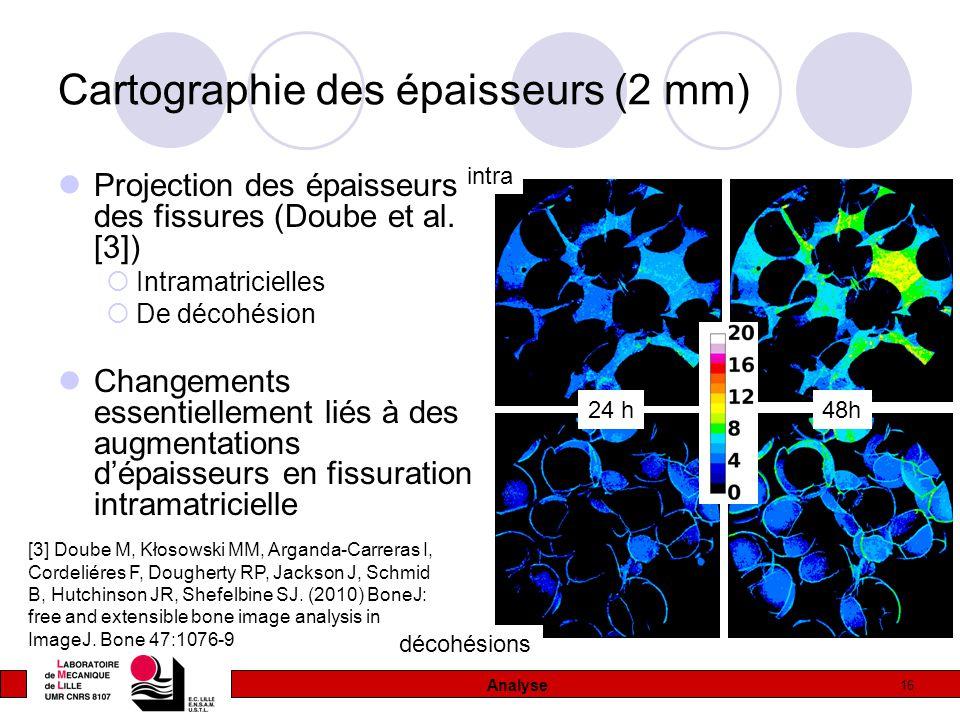 16 Cartographie des épaisseurs (2 mm) Projection des épaisseurs des fissures (Doube et al. [3])  Intramatricielles  De décohésion Changements essent