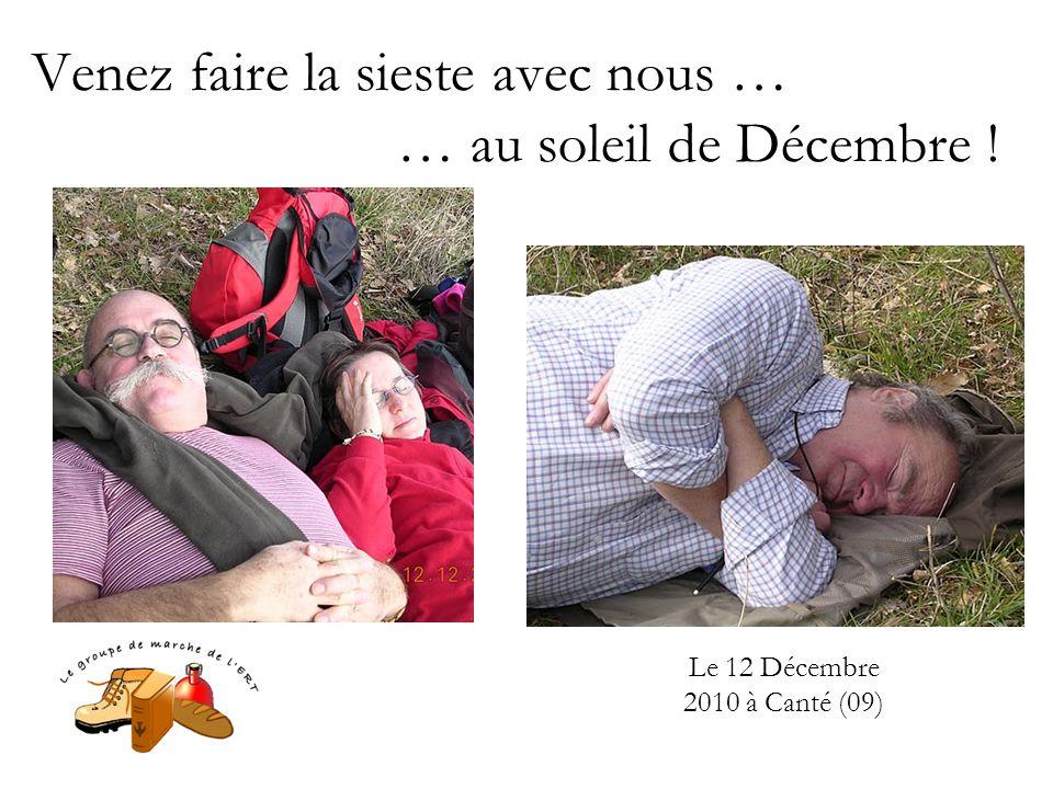 Venez faire la sieste avec nous … … au soleil de Décembre ! Le 12 Décembre 2010 à Canté (09)