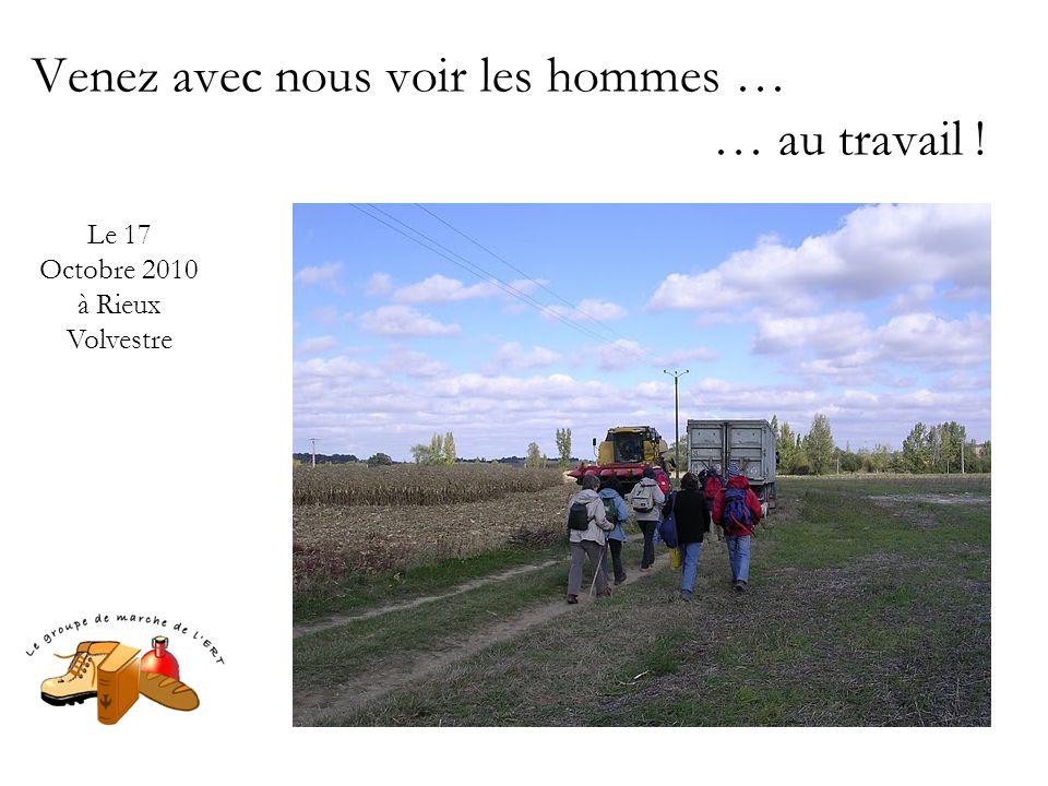 Venez avec nous voir les hommes … … au travail ! Le 17 Octobre 2010 à Rieux Volvestre
