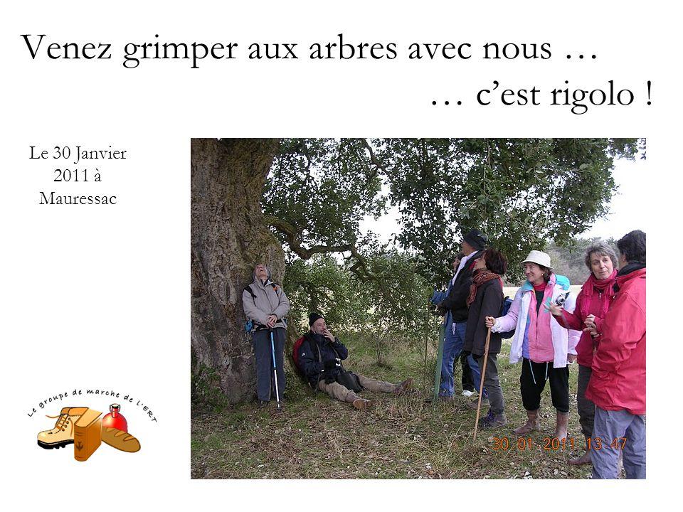 Venez grimper aux arbres avec nous … … c'est rigolo ! Le 30 Janvier 2011 à Mauressac