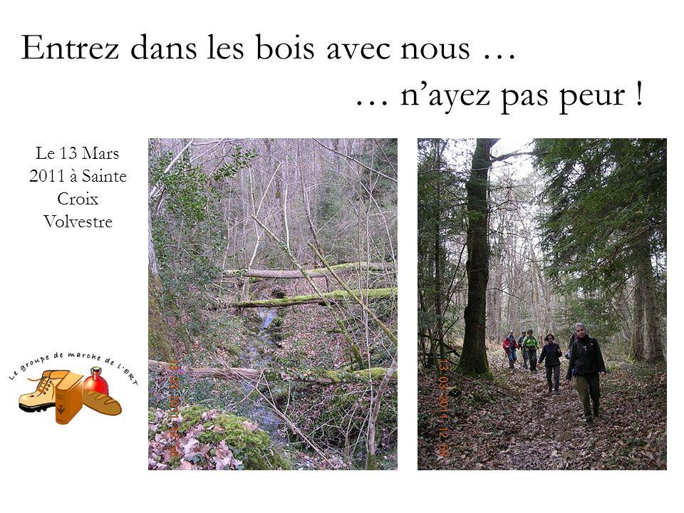 Entrez dans les bois avec nous … … n'ayez pas peur ! Le 13 Mars 2011 à Sainte Croix Volvestre