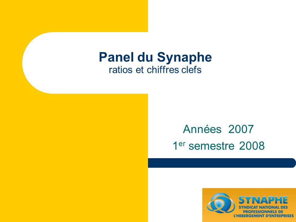 Panel du Synaphe ratios et chiffres clefs Années 2007 1 er semestre 2008