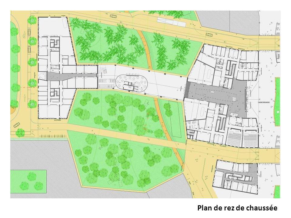 Plan de rez de chaussée