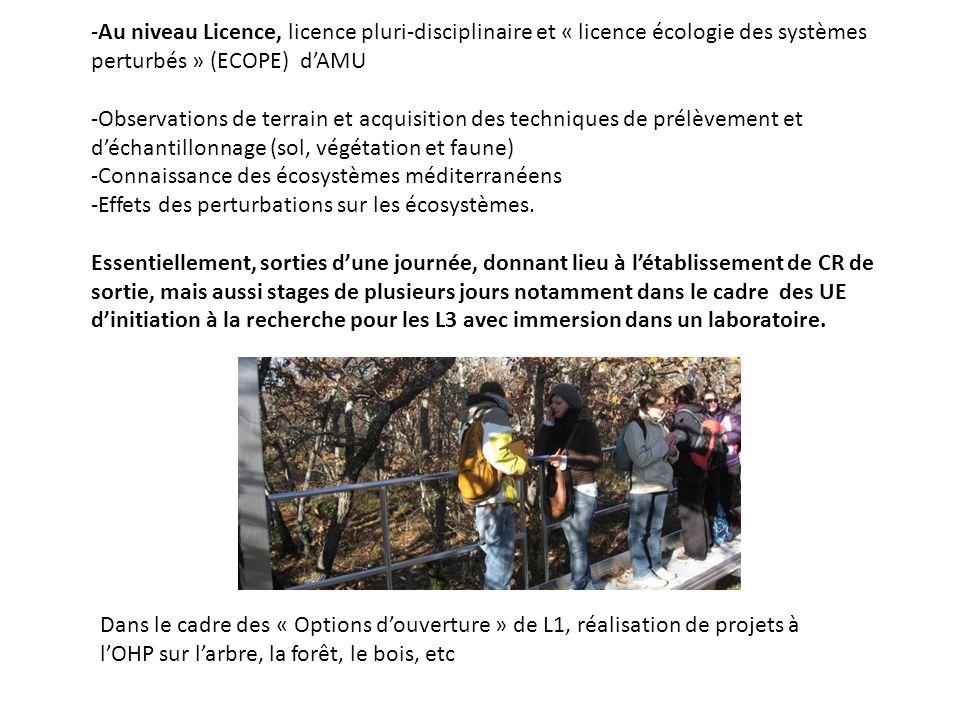 -Au niveau Licence, licence pluri-disciplinaire et « licence écologie des systèmes perturbés » (ECOPE) d'AMU -Observations de terrain et acquisition des techniques de prélèvement et d'échantillonnage (sol, végétation et faune) -Connaissance des écosystèmes méditerranéens -Effets des perturbations sur les écosystèmes.