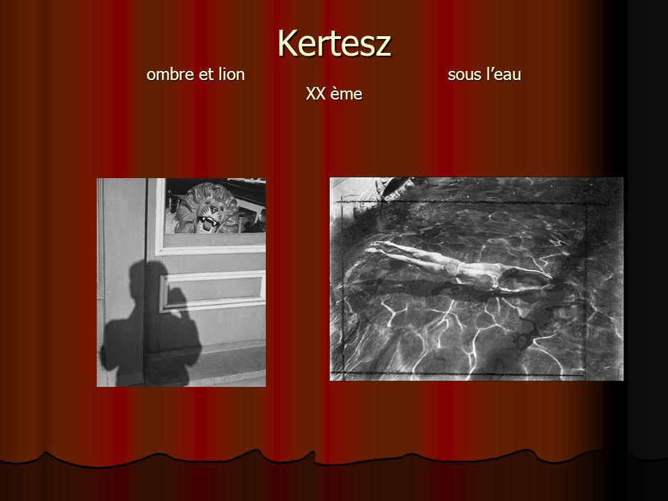 Kertesz ombre et lion sous l'eau XX ème