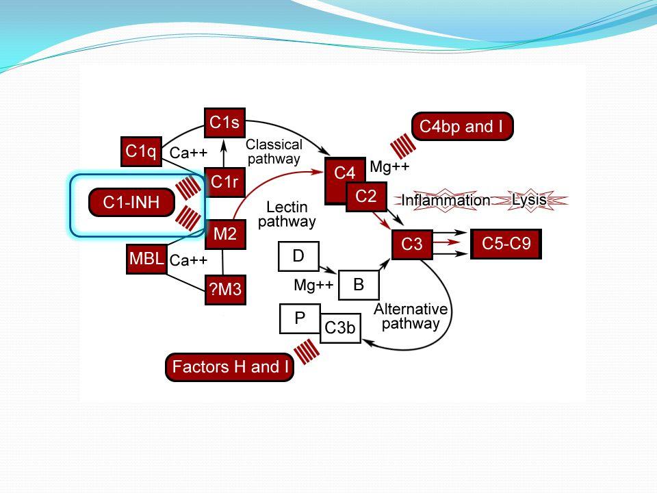 Déterminer l'intérêt et l'efficacité du C1INH dans le traitement du sepsis en terme de réponse inflammatoire systémique et de survie OBJECTIF