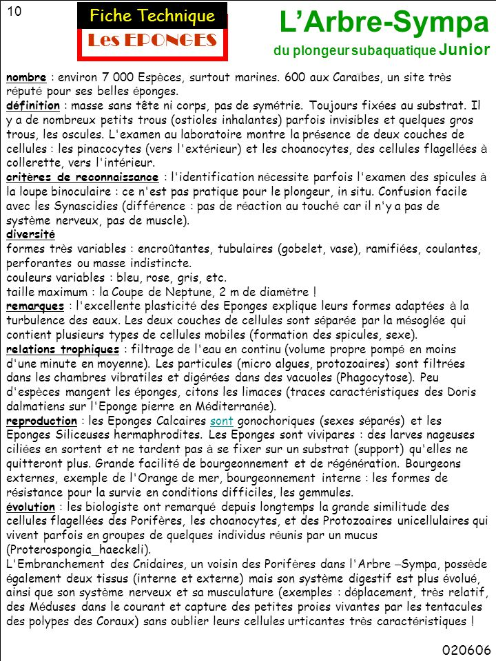 L'Arbre-Sympa du plongeur subaquatique Junior 10 nombre : environ 7 000 Esp è ces, surtout marines. 600 aux Cara ï bes, un site tr è s r é put é pour