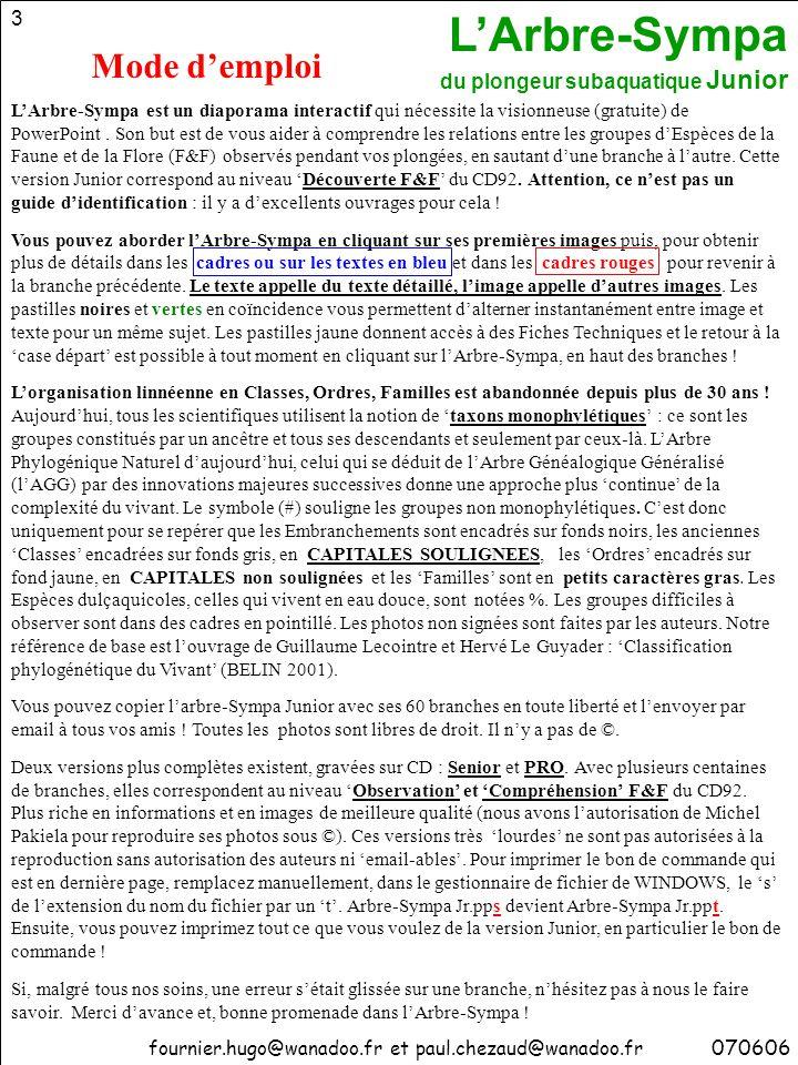L'Arbre-Sympa du plongeur subaquatique Junior 54 90 – ASCIDIES (Urocordés) 1300 espèces décrites vie fixée (la plupart) tunique avec tunicine, proche cellulose ASCIDIACEES (benthiques, fixées) Salpe (pélagique, libre) 270406 AUTRES Ascidies Solitaires : Ascidies Sociales : Ascidies Coloniales : Phallusie Ascidie rouge Diazone Claveline Botrylle Fraise de mer APLOUSOBRANCHES PHLEBOBRANCHES STOLIDOBRANCHES ou Pour votre information : Ce classement visuel, pratique pour les plongeurs, n ' est pas reconnu par les scientifiques qui, eux, distinguent trois groupes bas é s sur l ' examen à la binoculaire du pharynx des diff é rentes Esp è ces :