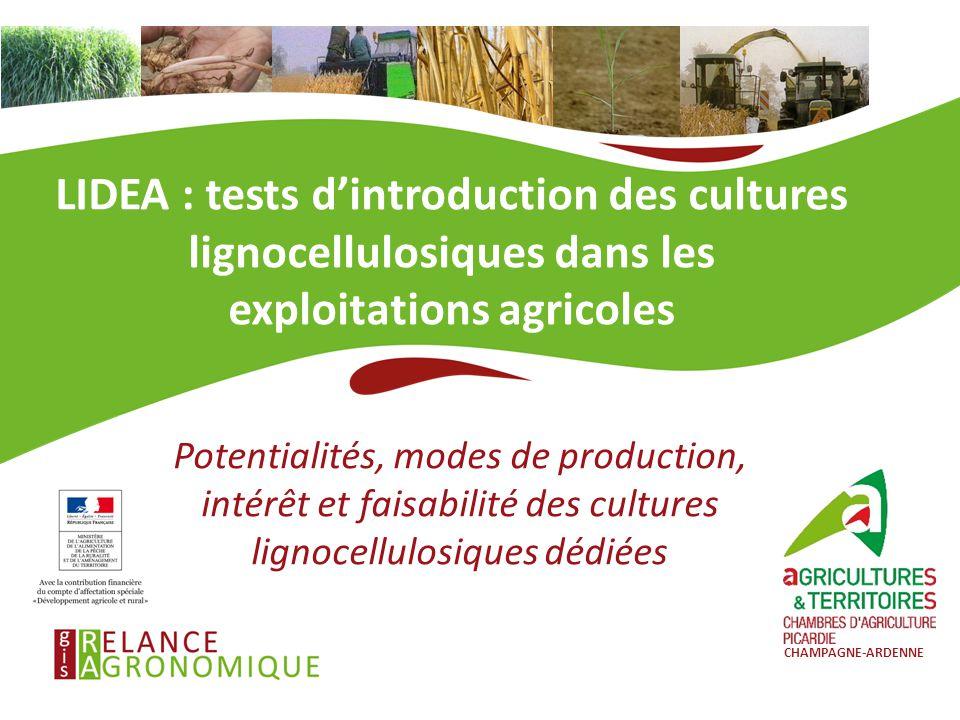LIDEA : tests d'introduction des cultures lignocellulosiques dans les exploitations agricoles Potentialités, modes de production, intérêt et faisabili
