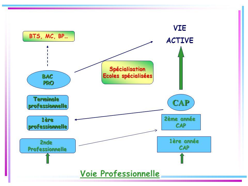 Voie Professionnelle 2ndeProfessionnelle CAP VIE ACTIVE BTS, MC, BP… 2ème année CAP 1ère année CAP 1ère professionnelle Terminaleprofessionnelle BACPRO Spécialisation Ecoles spécialisées
