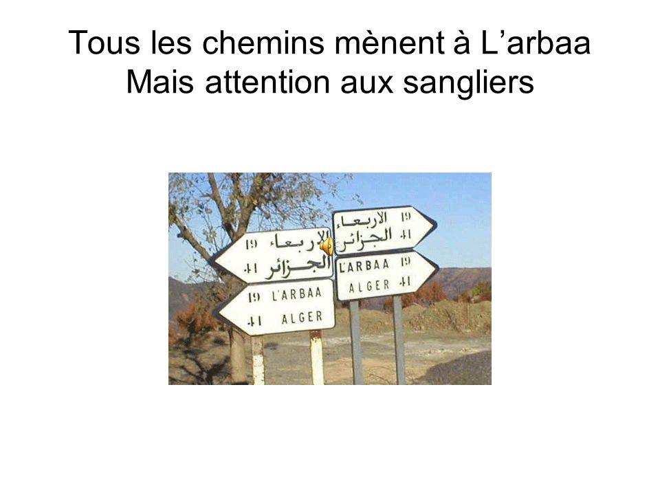 Tous les chemins mènent à L'arbaa Mais attention aux sangliers