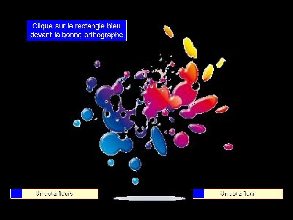 Clique sur le rectangle bleu devant la bonne orthographe Un pot de fleursUn pot de fleur