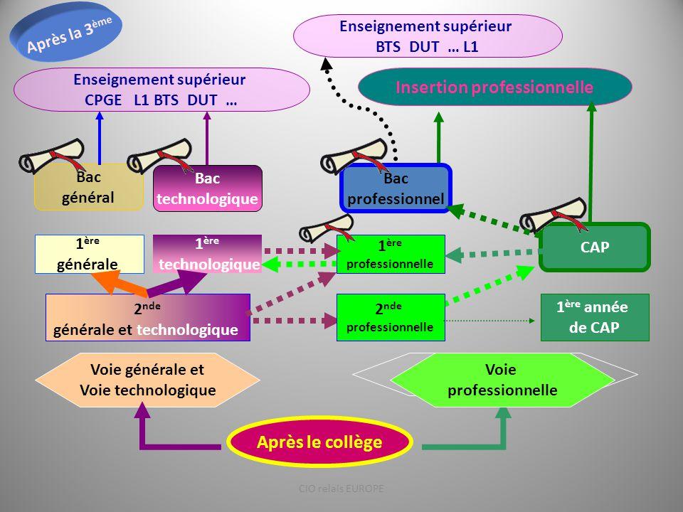 Insertion professionnelle Voie générale et Voie technologique Voie professionnelle Bac technologique 1 ère générale 2 nde générale et technologique 1