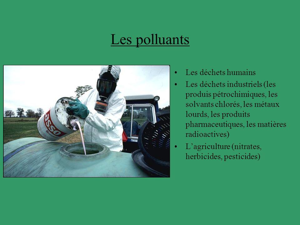 Les polluants Les déchets humains Les déchets industriels (les produis pétrochimiques, les solvants chlorés, les métaux lourds, les produits pharmaceu