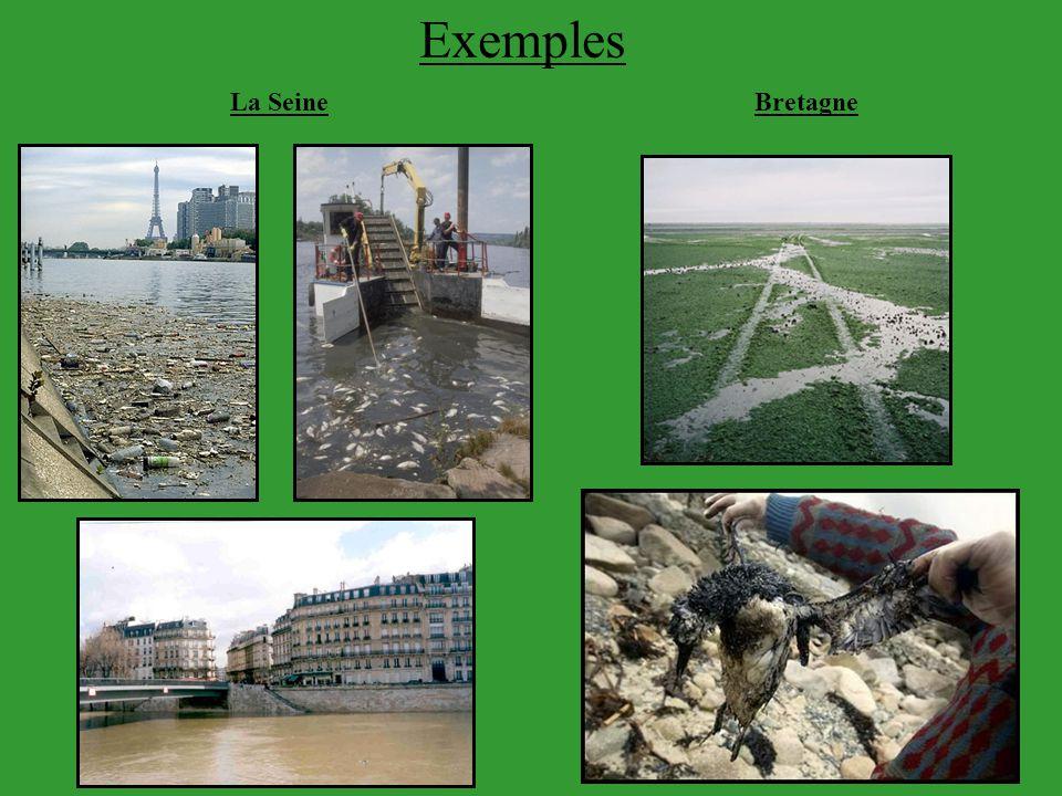 Exemples La SeineBretagne