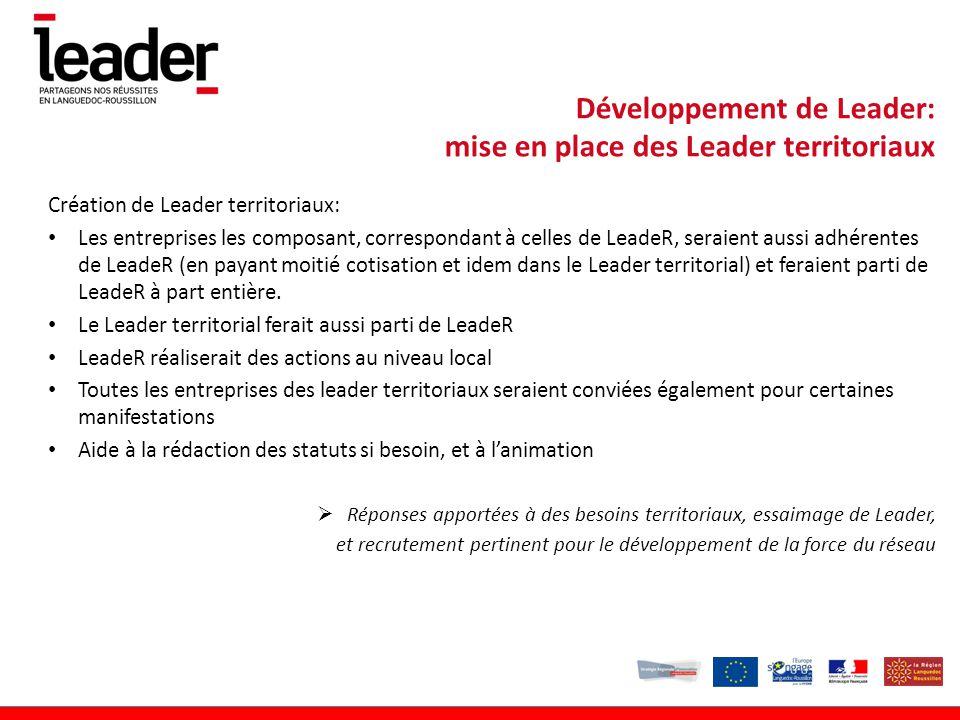 Création de Leader territoriaux: Les entreprises les composant, correspondant à celles de LeadeR, seraient aussi adhérentes de LeadeR (en payant moitié cotisation et idem dans le Leader territorial) et feraient parti de LeadeR à part entière.