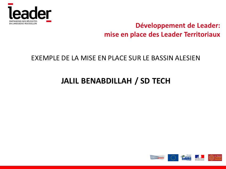 EXEMPLE DE LA MISE EN PLACE SUR LE BASSIN ALESIEN JALIL BENABDILLAH / SD TECH Développement de Leader: mise en place des Leader Territoriaux