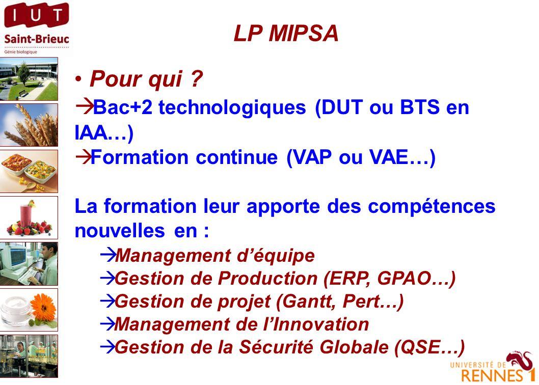 LP MIPSA : quel contenu ?