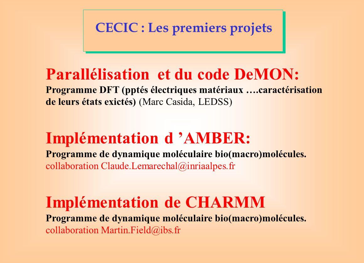 CECIC : Les premiers projets Parallélisation et du code DeMON: Programme DFT (pptés électriques matériaux ….caractérisation de leurs états exictés) (Marc Casida, LEDSS) Implémentation d 'AMBER: Programme de dynamique moléculaire bio(macro)molécules.