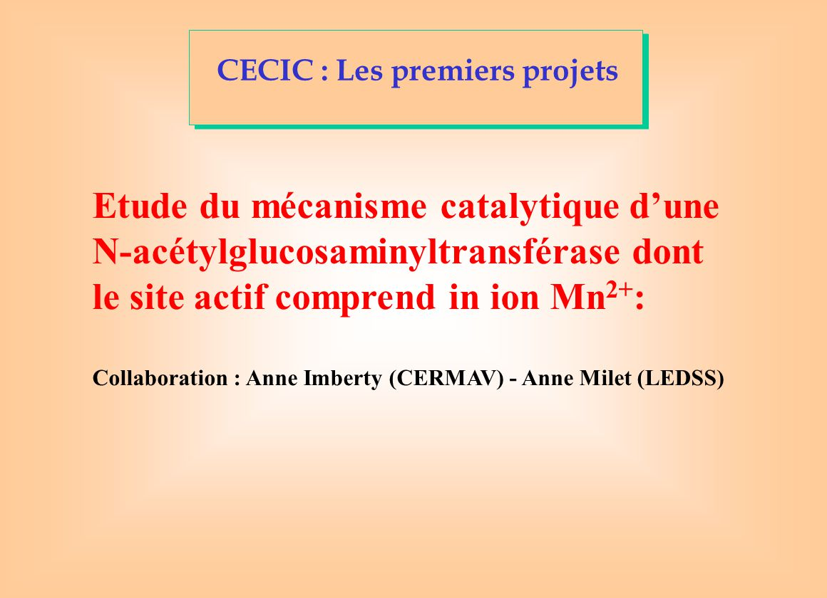 CECIC : Les premiers projets Etude du mécanisme catalytique d'une N-acétylglucosaminyltransférase dont le site actif comprend in ion Mn 2+ : Collaboration : Anne Imberty (CERMAV) - Anne Milet (LEDSS)