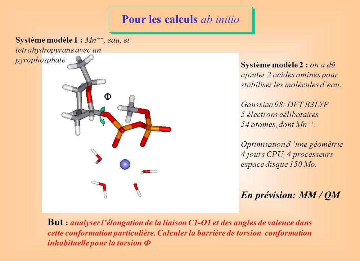  Système modèle 1 : Mn ++, eau, et tetrahydropyrane avec un pyrophosphate Système modèle 2 : on a dû ajouter 2 acides aminés pour stabiliser les molécules d'eau.