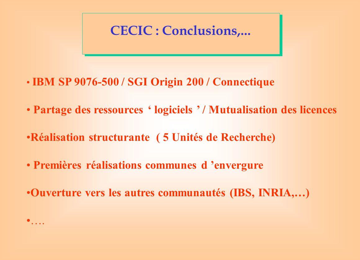 CECIC : Conclusions,...