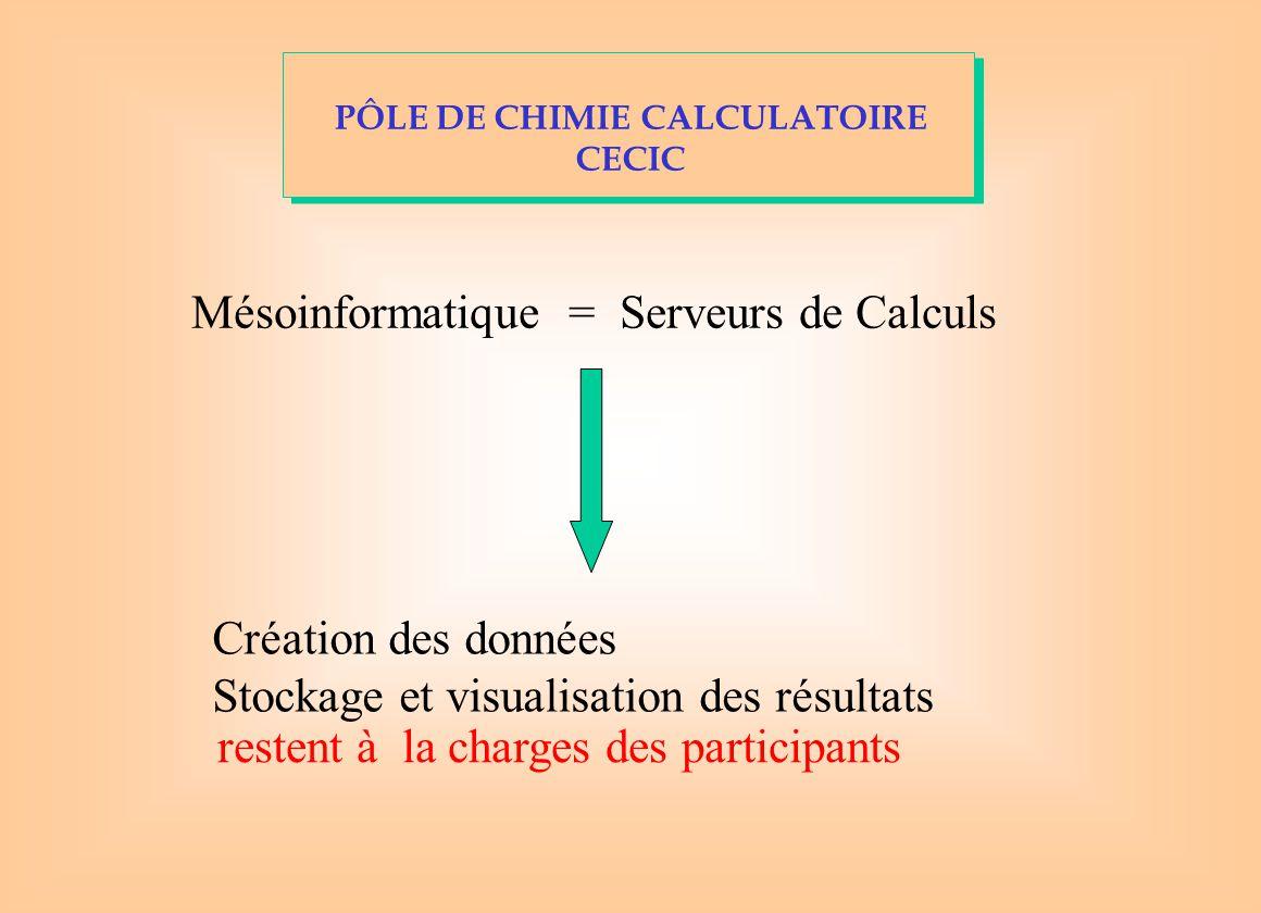 Mésoinformatique = Serveurs de Calculs Création des données Stockage et visualisation des résultats restent à la charges des participants PÔLE DE CHIMIE CALCULATOIRE CECIC