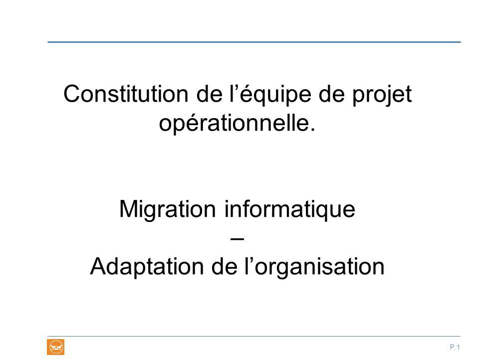 Constitution de l'équipe de projet opérationnelle. Migration informatique – Adaptation de l'organisation P.1