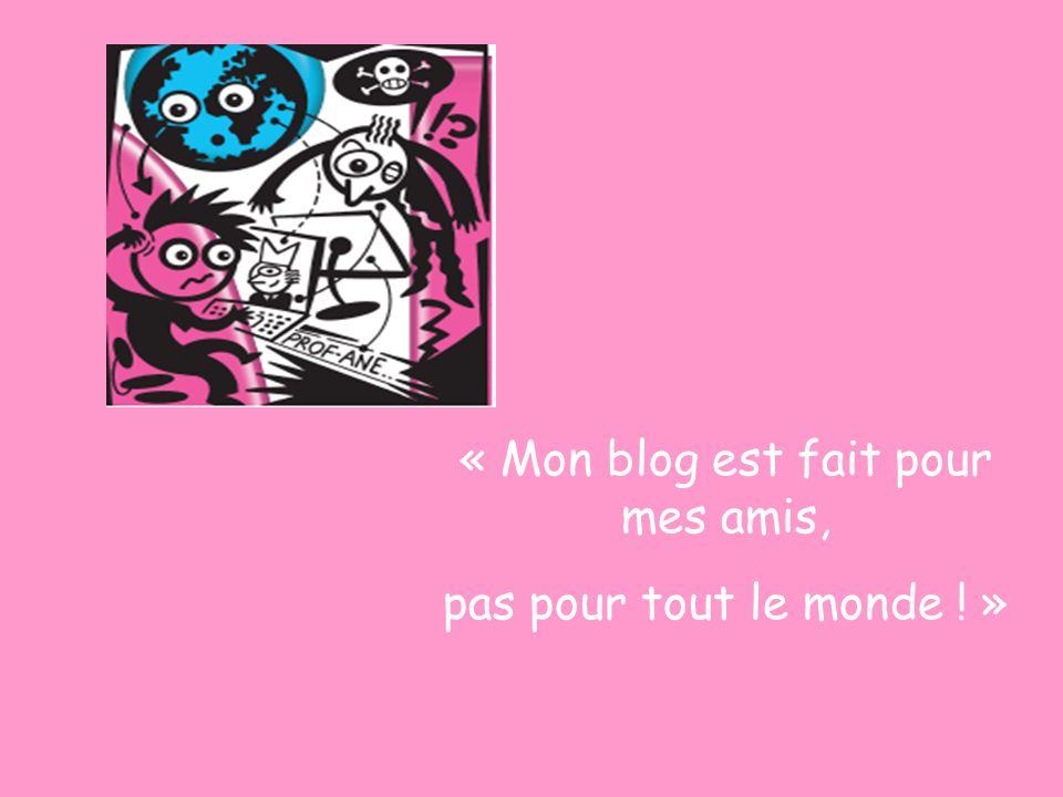 « Mon blog est fait pour mes amis, pas pour tout le monde ! »