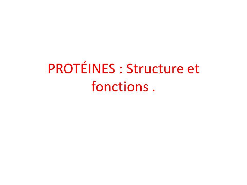 PROTÉINES : Structure et fonctions.