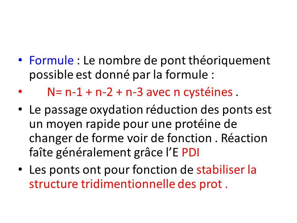 Formule : Le nombre de pont théoriquement possible est donné par la formule : N= n-1 + n-2 + n-3 avec n cystéines. Le passage oxydation réduction des