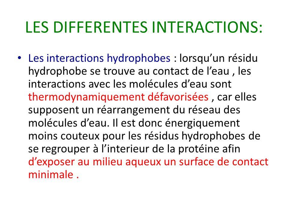 LES DIFFERENTES INTERACTIONS: Les interactions hydrophobes : lorsqu'un résidu hydrophobe se trouve au contact de l'eau, les interactions avec les molécules d'eau sont thermodynamiquement défavorisées, car elles supposent un réarrangement du réseau des molécules d'eau.