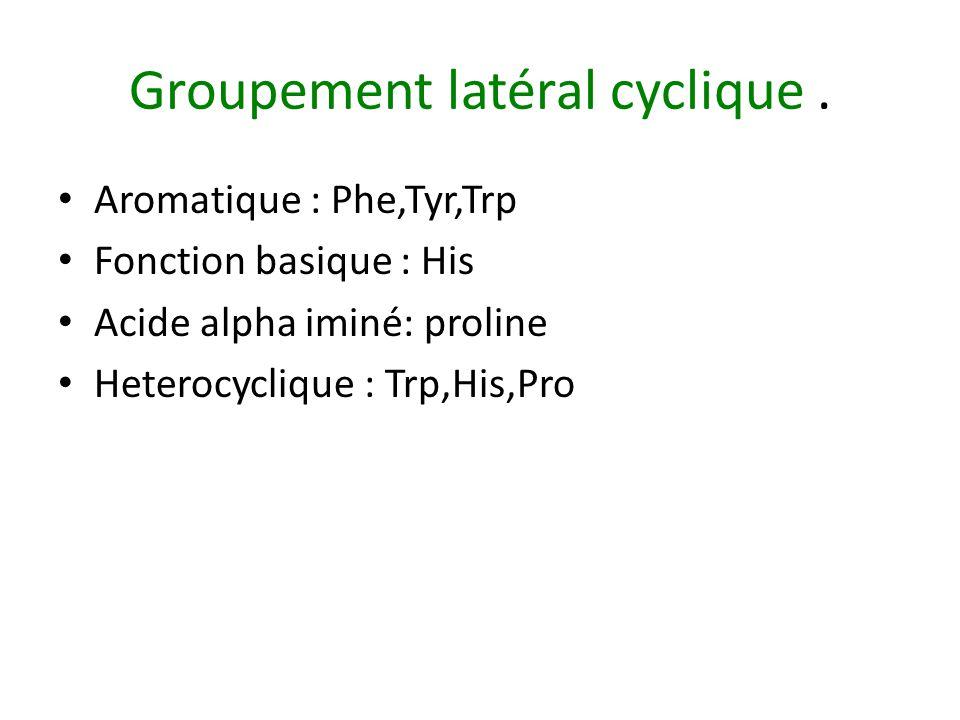 Groupement latéral cyclique.