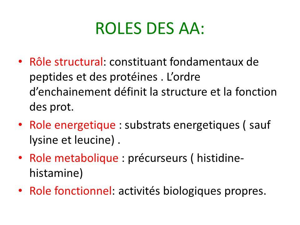 ROLES DES AA: Rôle structural: constituant fondamentaux de peptides et des protéines. L'ordre d'enchainement définit la structure et la fonction des p