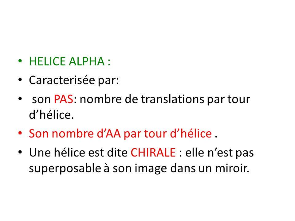 HELICE ALPHA : Caracterisée par: son PAS: nombre de translations par tour d'hélice. Son nombre d'AA par tour d'hélice. Une hélice est dite CHIRALE : e
