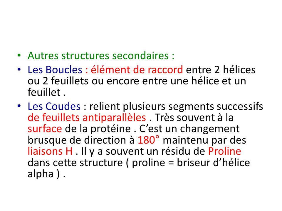Autres structures secondaires : Les Boucles : élément de raccord entre 2 hélices ou 2 feuillets ou encore entre une hélice et un feuillet. Les Coudes