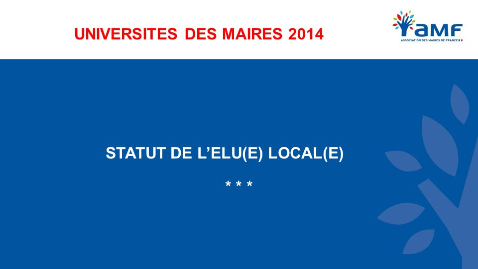 UNIVERSITES DES MAIRES 2014 STATUT DE L'ELU(E) LOCAL(E) * * *