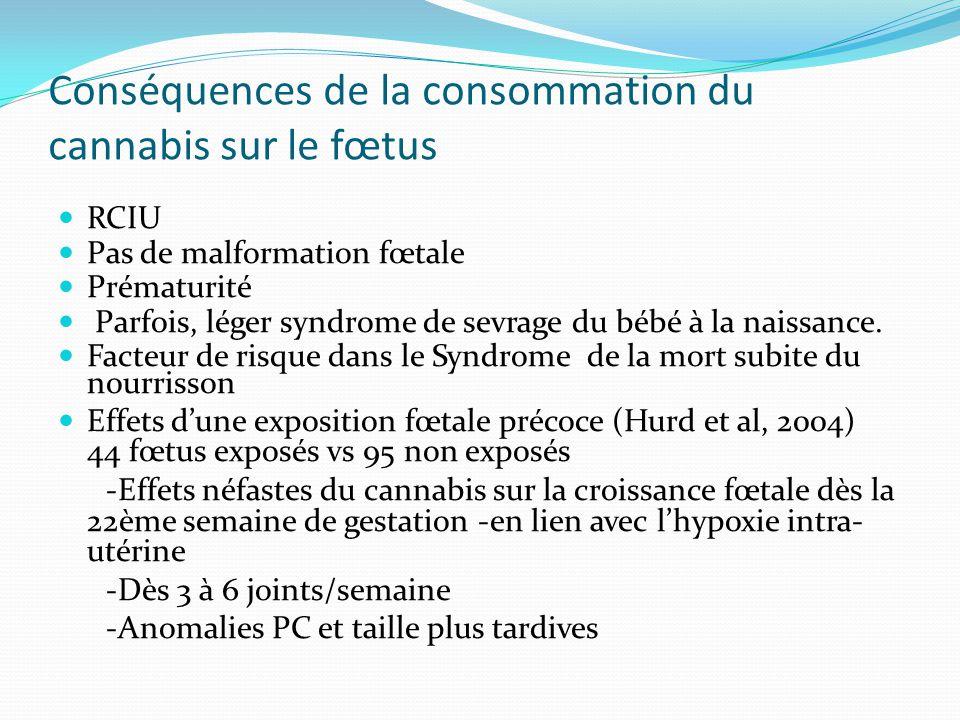 Conséquences de la consommation du cannabis sur le fœtus RCIU Pas de malformation fœtale Prématurité Parfois, léger syndrome de sevrage du bébé à la n