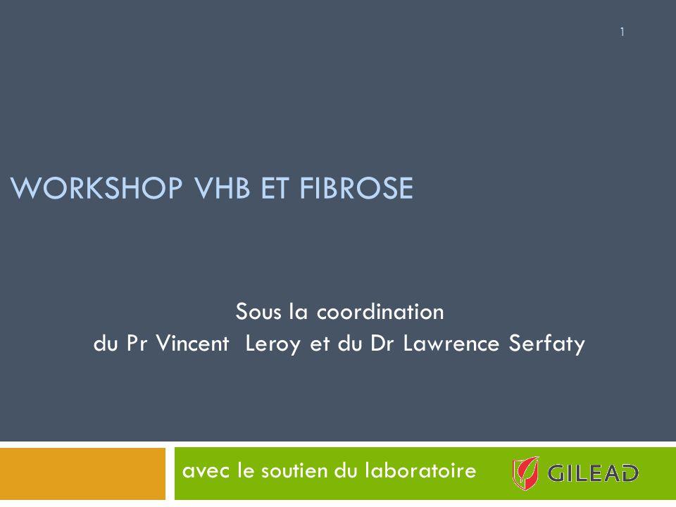 WORKSHOP VHB ET FIBROSE avec le soutien du laboratoire 1 Sous la coordination du Pr Vincent Leroy et du Dr Lawrence Serfaty