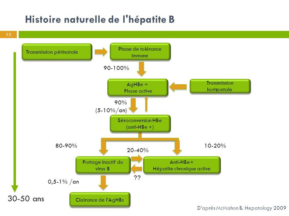 Histoire naturelle de l'hépatite B 13 D'après McMahon B. Hepatology 2009 Transmission périnatale Clairance de l'AgHBs Séroconversion HBe (anti-HBe +)