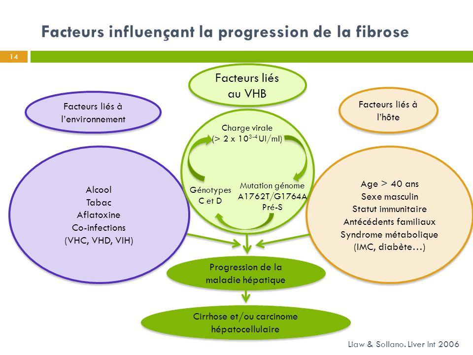 Facteurs influençant la progression de la fibrose 14 Liaw & Sollano. Liver Int 2006 Facteurs liés au VHB Facteurs liés à l'environnement Facteurs liés